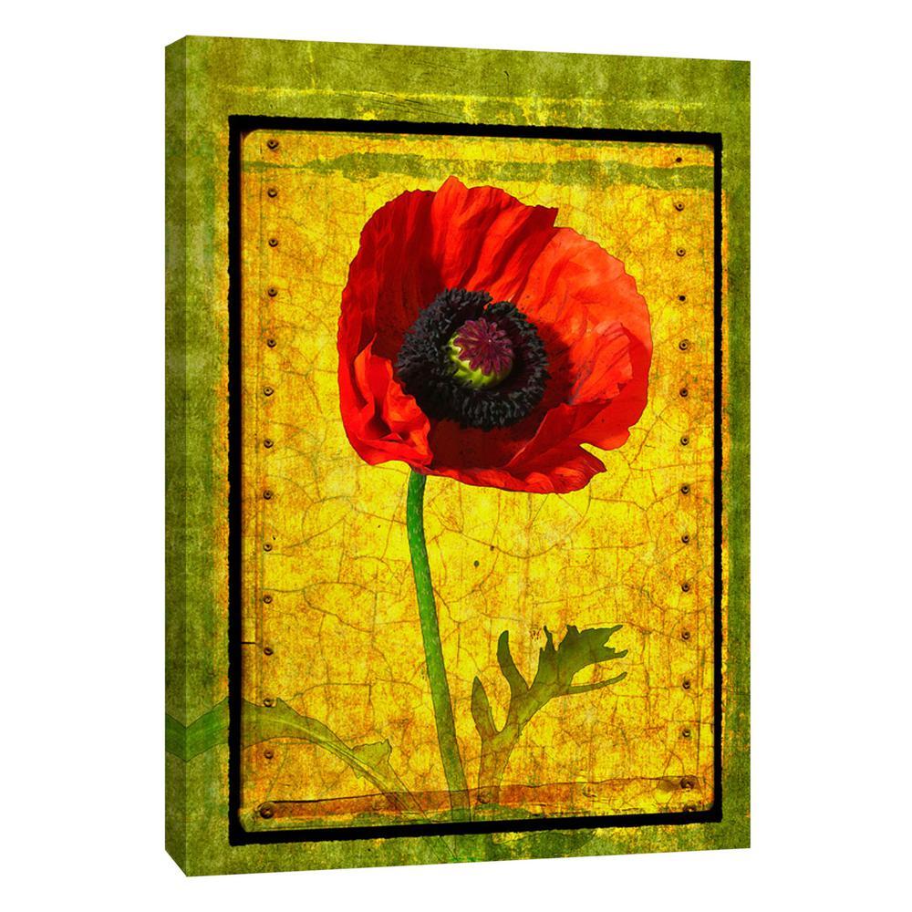 Multicolor Poppy Wall Art | www.topsimages.com