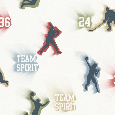 Glavine Cream Sports Figures Toss Wallpaper