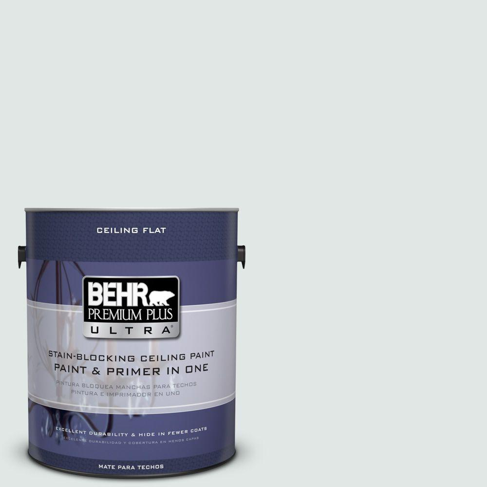 1 gal. No.UL 220-11 Ceiling Tinted to Fresh Day Interior Paint