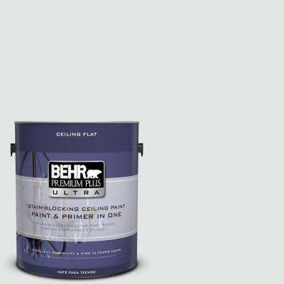 1 gal. No.UL 220-11 Ceiling Tinted to Fresh Day Flat Interior Paint and Primer in One