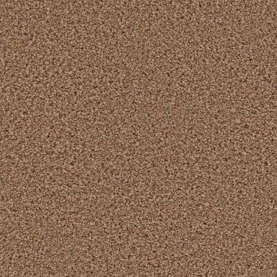 Carpet Sample - Around The Clock II - Color Playlist Texture 8 in. x 8 in.