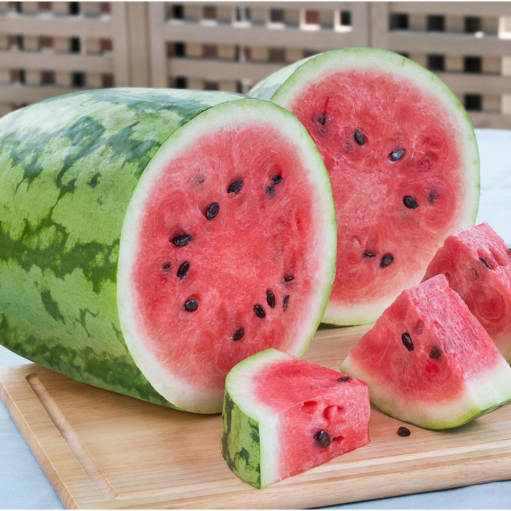 4.5 in. 19.3 oz. Watermelon-Jubilee