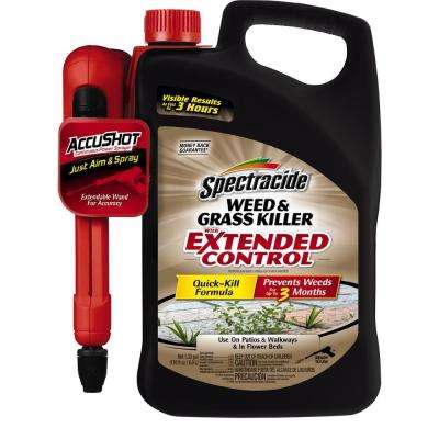 Weed and Grass Killer 1.3 gal. Accushot Extended Control Sprayer