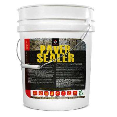 5 Gal. Penetrating Paver Sealer and Water-Repellent, Clear Water-Based Formula with Salt Guard and Stain Protection