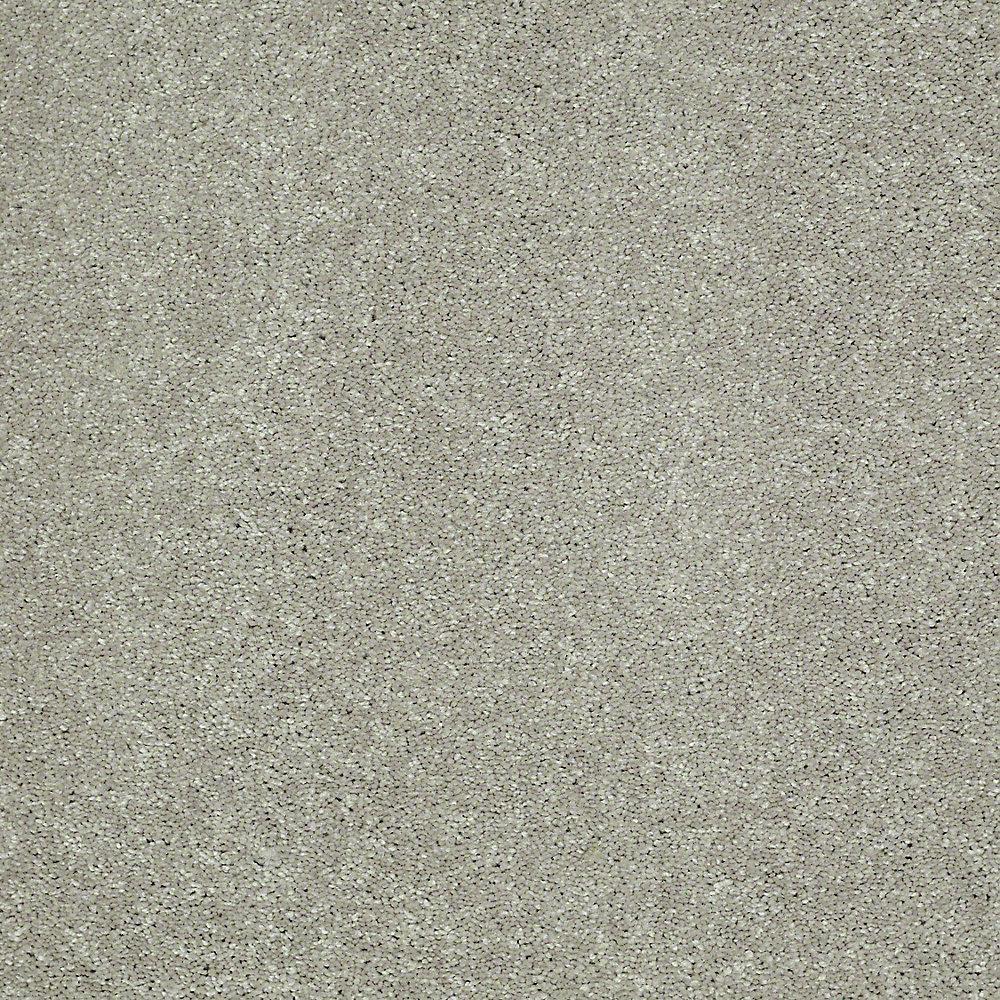 Home Decorators Collection Carpet Sample Brave Soul Ii