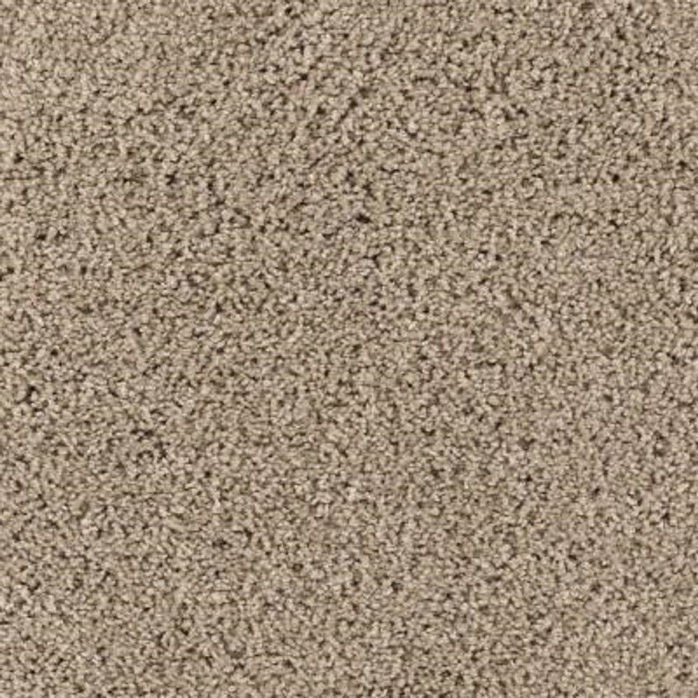 Carpet Sample - Ashcraft II - Color Dry Gourd Texture 8