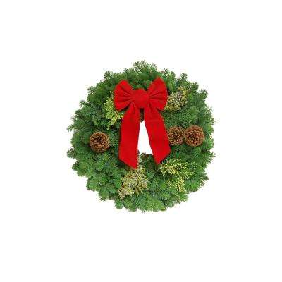 22 in. Fresh Noble Fir Christmas Wreath with Red Bow (2-Pack)