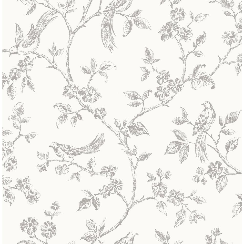 Aaron White Bird Trail Wallpaper