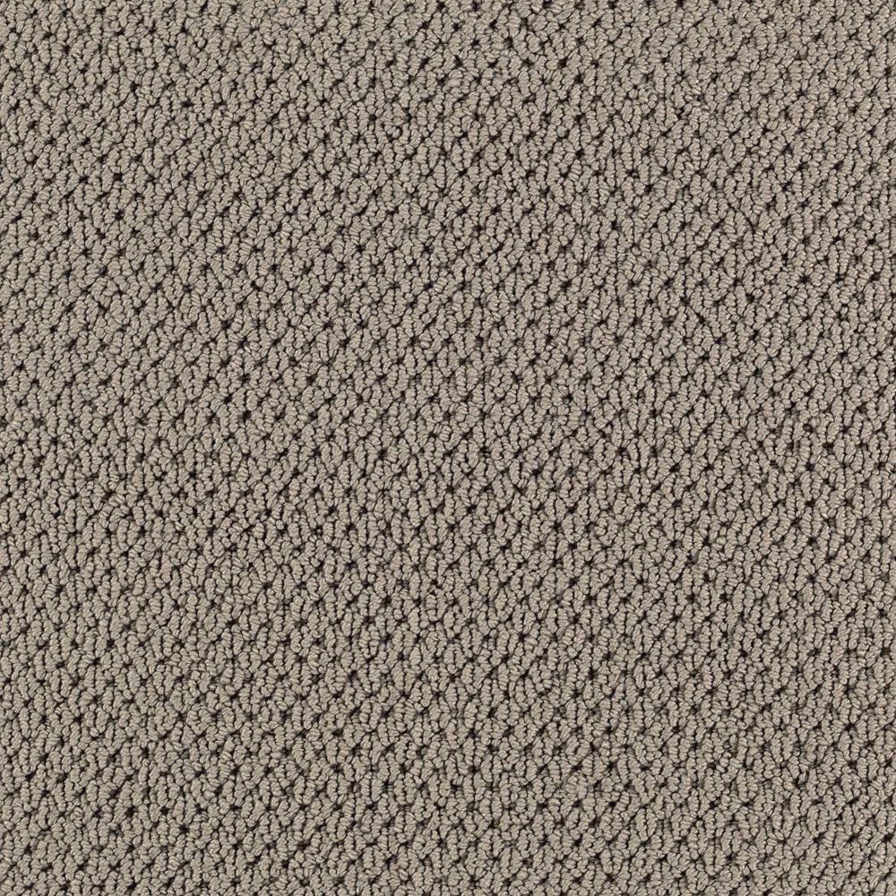 Carpet Sample-Deliverable - Color Amazon Loop 8 in. x 8 in.