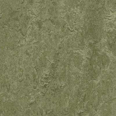 Pine Forest 9.8 mm Thick x 11.81 in. Wide x 35.43 in. Length Laminate Flooring (20.34 sq. ft. / case)