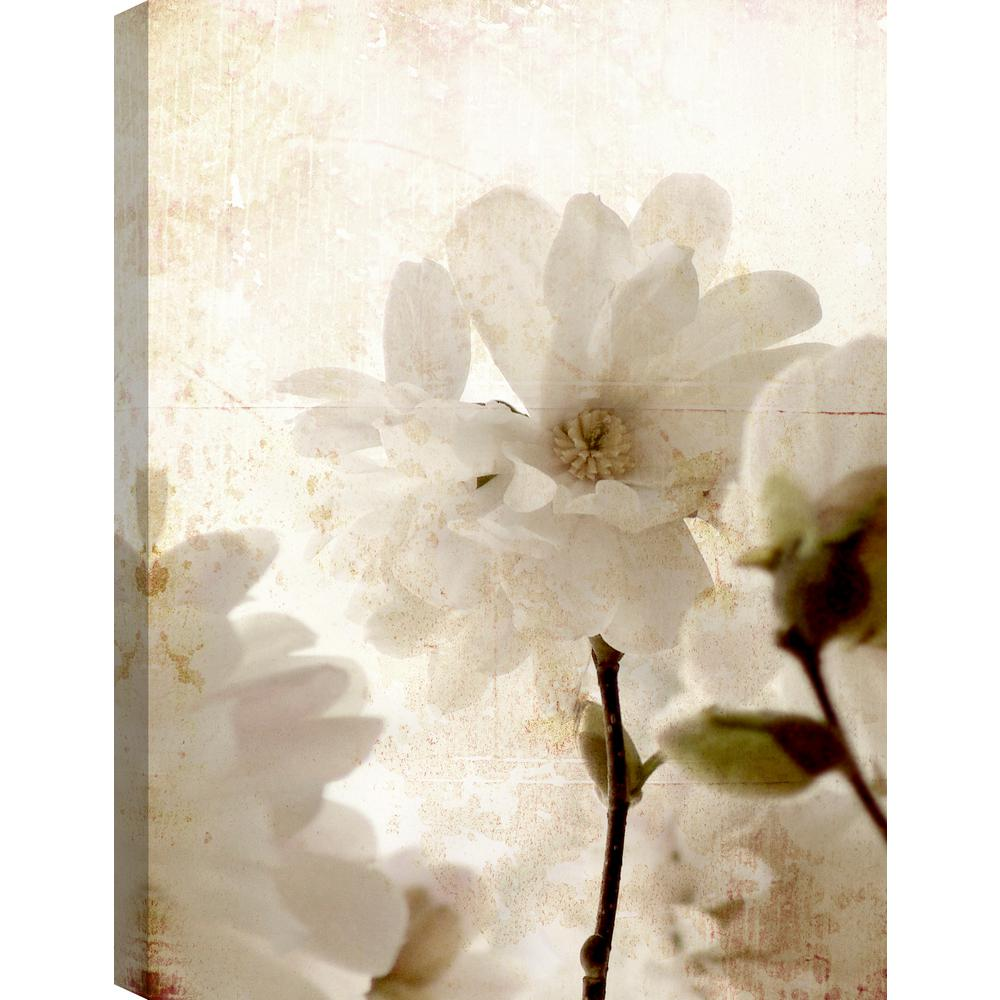 Artmaison Canada White Flowers Floral Art Fresh Printed Canvas