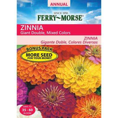 Zinnia Giant Double Flowered Mixed Colors Seed