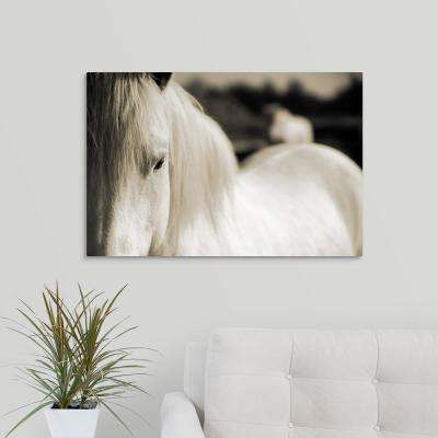 "30 in. x 20 in. ""Camargue Horse, South of France"" by  Scott Stulberg Canvas Wall Art"