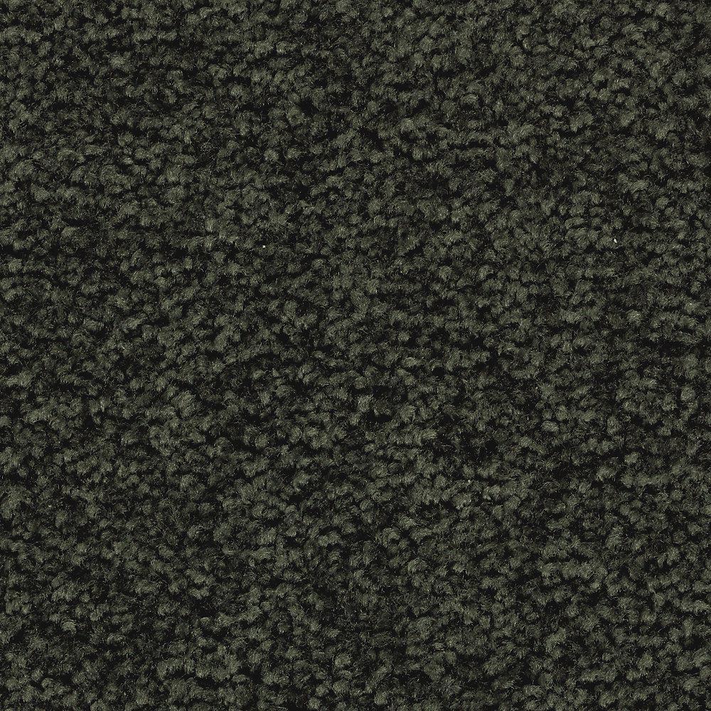 Unblemished I-Color Rockwall Vine Textured 12 ft. Carpet