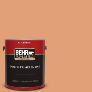 Behr Premium Plus 1 Gal M220 5 Roasted Seeds Flat Exterior Paint And Primer In One 440001 The Home Depot