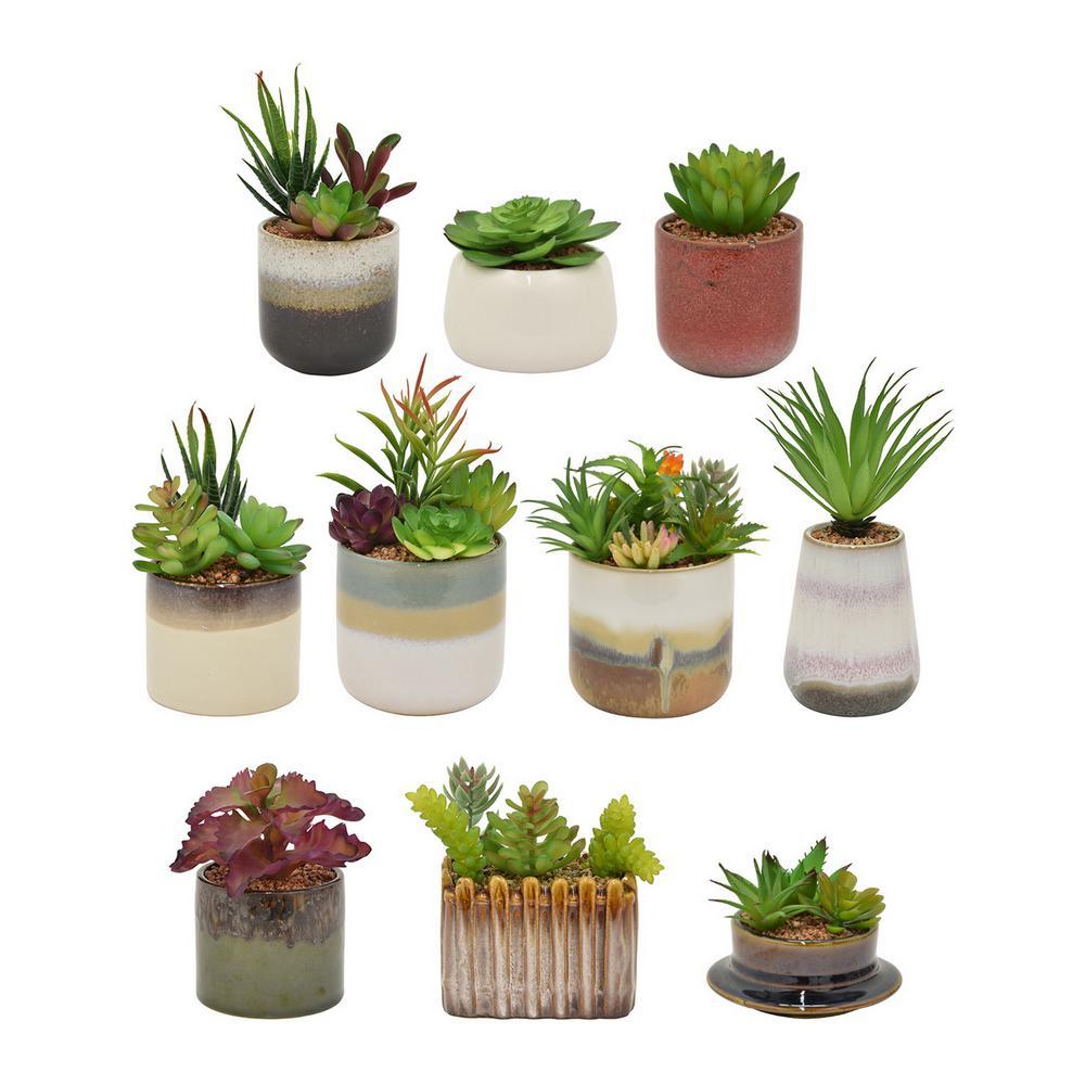 4 in. Green Succulent in Pot (Set of 10)