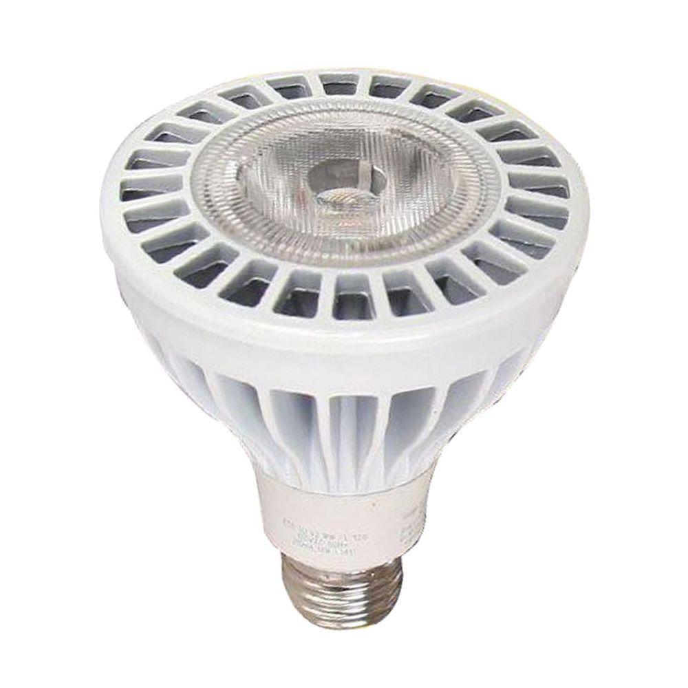 EcoSmart PAR30 15-Watt (75W) Bright White LED Flood Light Bulb (2-Pack) (E)*