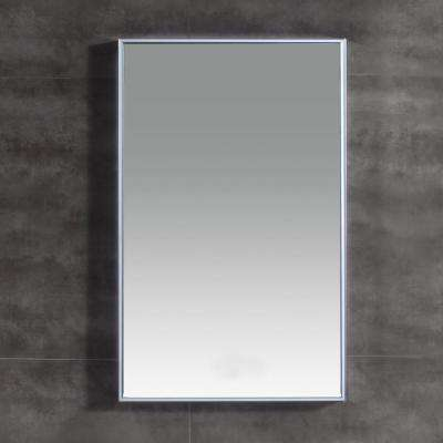 Titan 31 in. L x 20 in. W Single Wall LED Mirror in Chrome