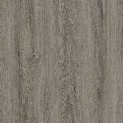 Verge 6 in. x 48 in. Silver Oak Glue Down Vinyl Plank Flooring (36 sq. ft. / case)