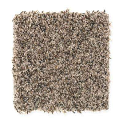San Rafael I (F2) - Color Chestnut Texture 12 ft. Carpet