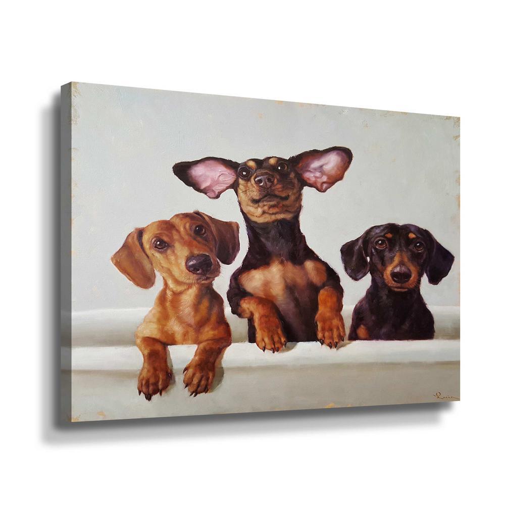 '3 Amigos' by  Lucia Heffernan Canvas Wall Art