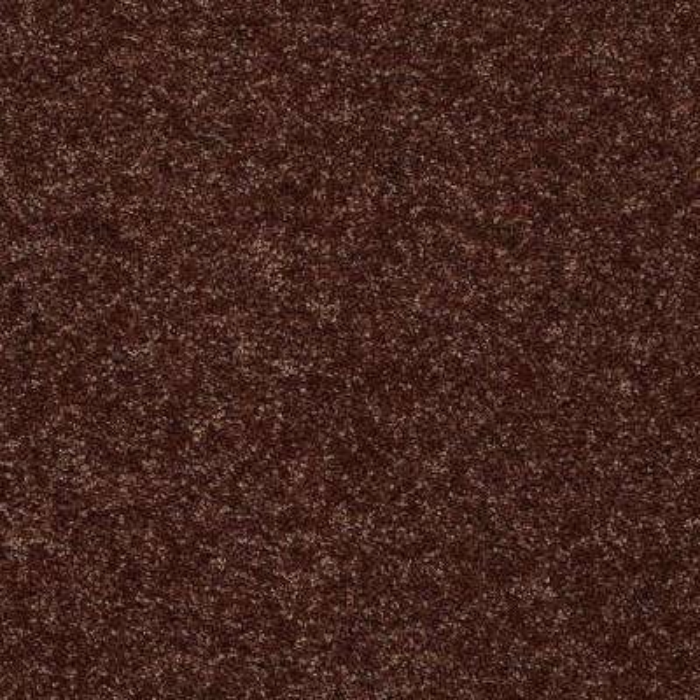 Carpet Sample - Palmdale II 12 - In Color Tunisia Sand 8 in. x 8 in.