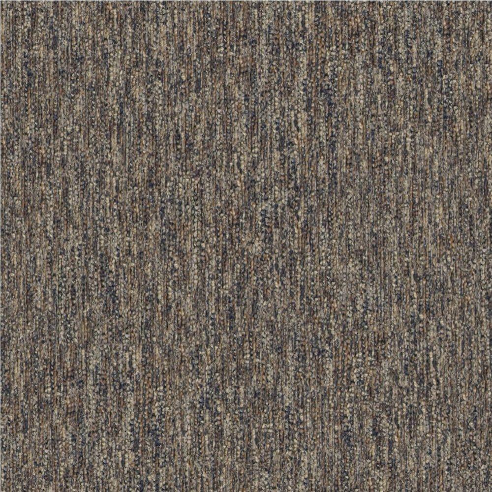 Where To Find Carpet Ss - Carpet Vidalondon