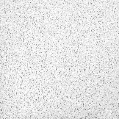 Textured 2 ft. x 2 ft. Lay-in Ceiling Tile (64 sq. ft. / Case)