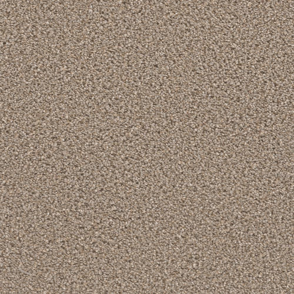 Home Decorators Collection Carpet