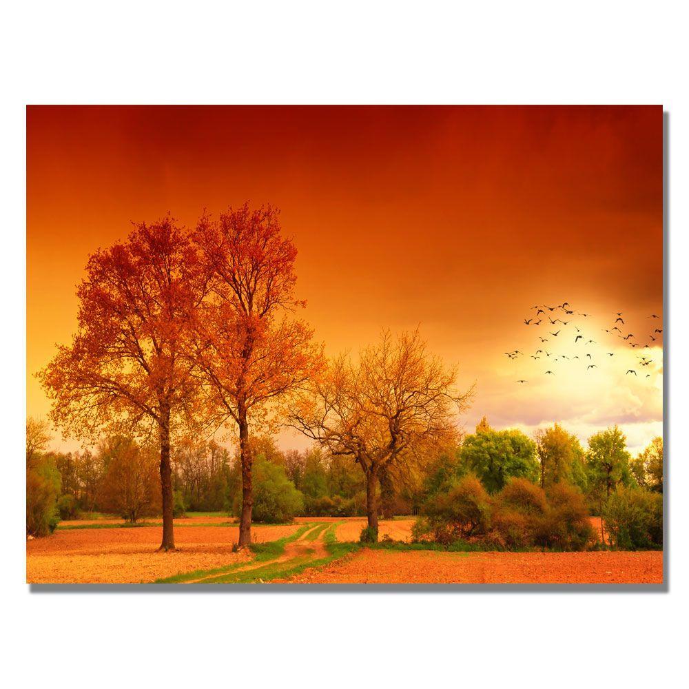 Trademark Fine Art 18 in. x 24 in. Orange World Canvas Art-DISCONTINUED