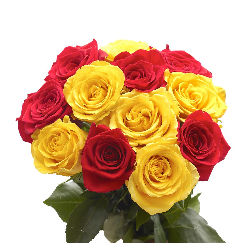 50 Stems of Roses 25 Yellow and 25 Red