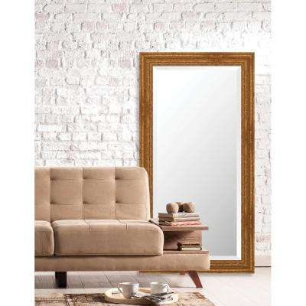Langdon 25.625 in. x 49.625 in. European Wide Framed Bevel Mirror