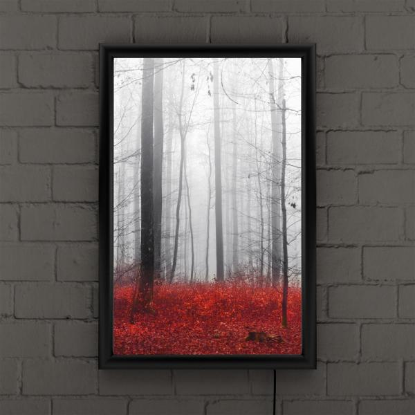 Trademark Fine Art Little Red Carpet By Philippe Sainte Laudy Framed With Led Light Landscape Wall Art 24 In X 16 In Psl0273 B Led The Home Depot