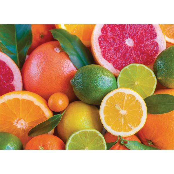 Citrus Fruit 18 in. W x 13 in. L Multi-Colored Polypropylene 4-pack Placemat Set