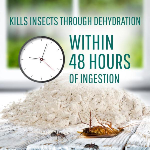 Safer Brand 4 Lb Diatomaceous Earth Bed Bug Flea Ant Crawling Insect Killer 51703 The Home Depot