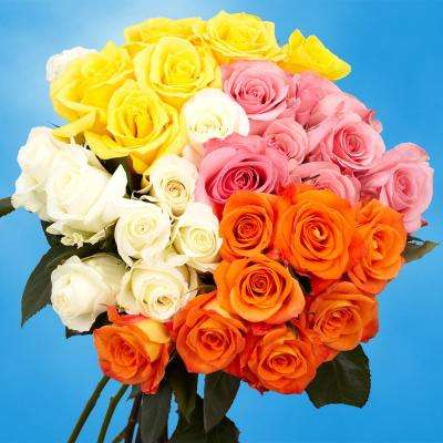 Fresh Assorted Color Roses (50 Stems)