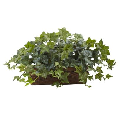 Puff Ivy with Ledge Basket