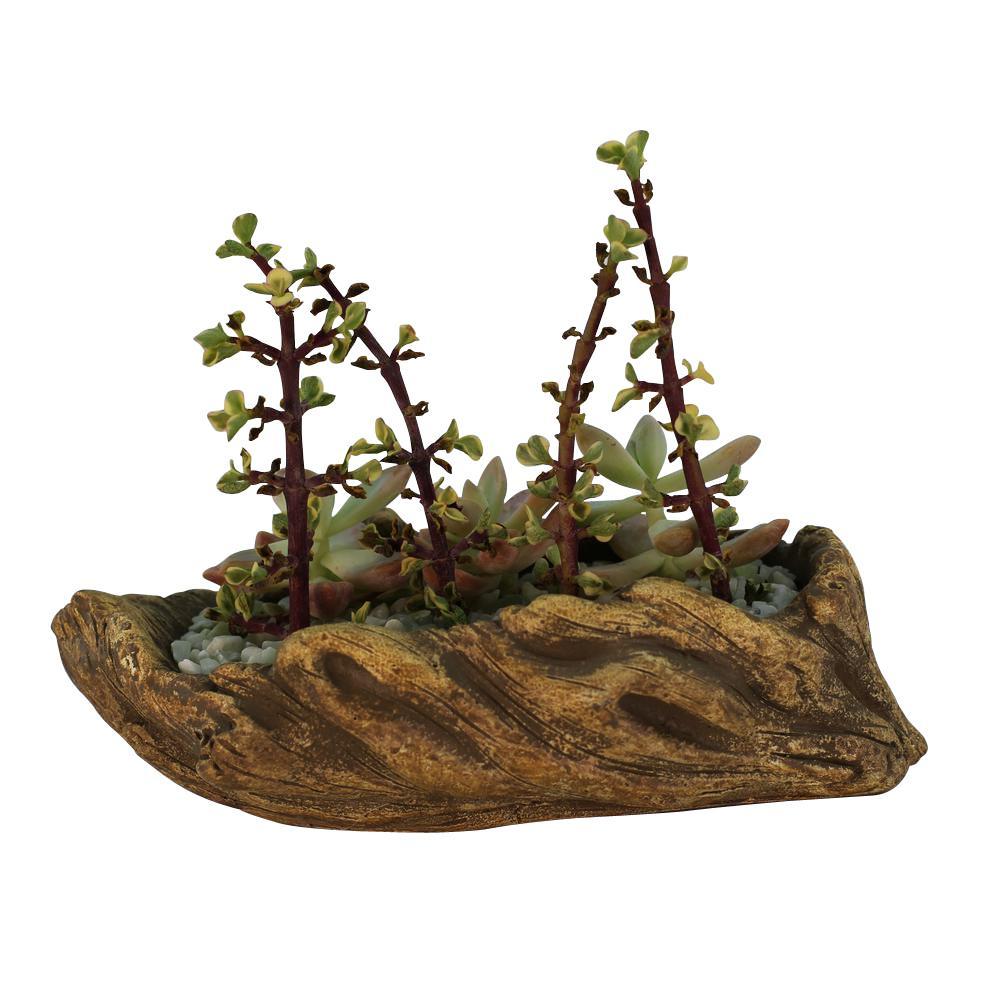 7.25 in. x 4.25 in. x 2.25 in. Hazel Ceramic Driftwood Ridge Log Planter