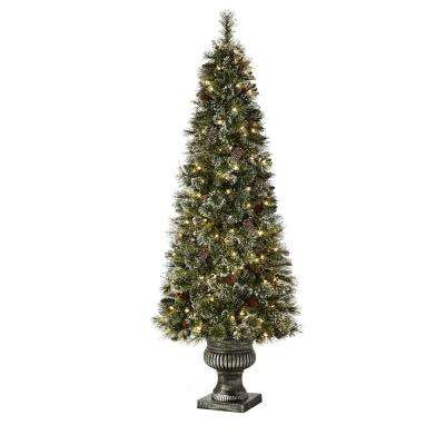 6.5 ft Sparkling Amelia Pine Potted Pre-Lit Artificial Christmas Tree with 200 White Lights