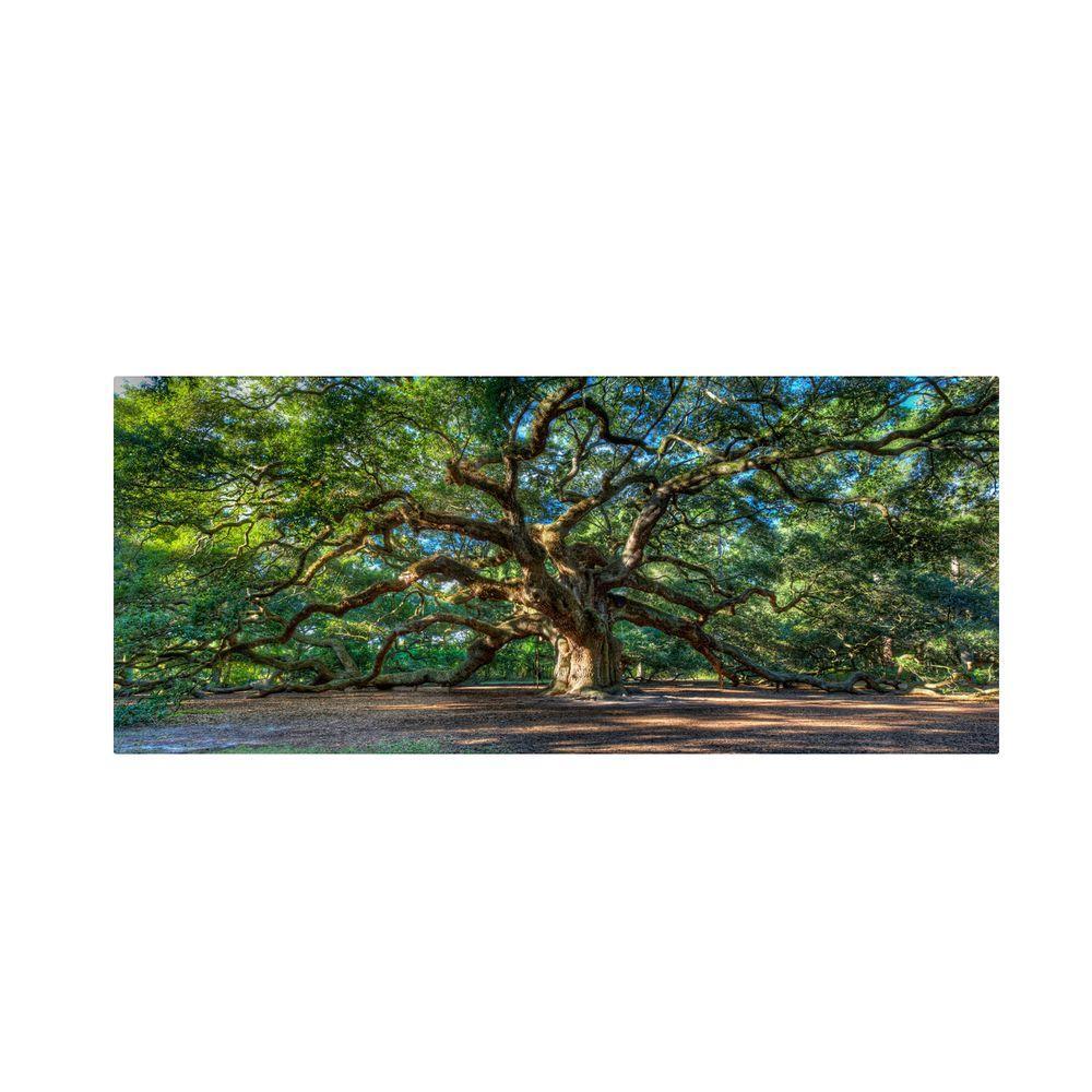 24 in. x 47 in. Angel Oak Charleston Canvas Art
