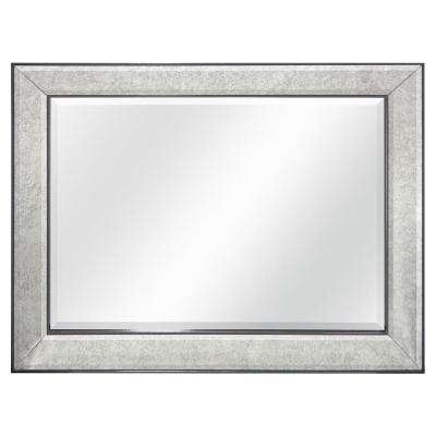 Brighton 40 in. H x 30 in. W Framed Mirror in Pewter