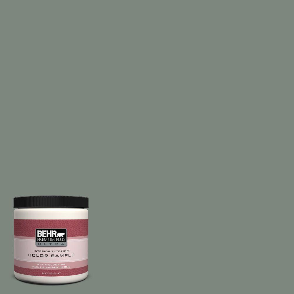 BEHR Premium Plus Ultra 8 oz. #700F-5 Wild Sage Interior/Exterior Paint Sample