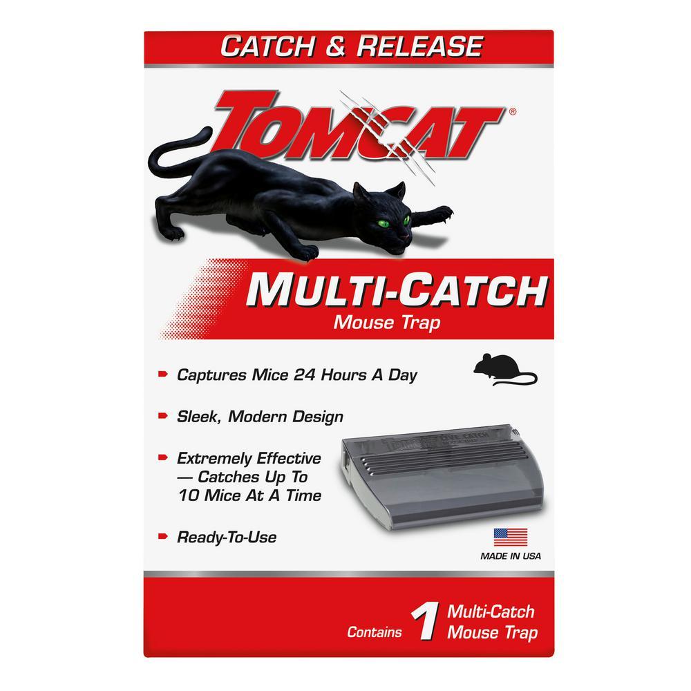 Multi-Catch Mouse Trap