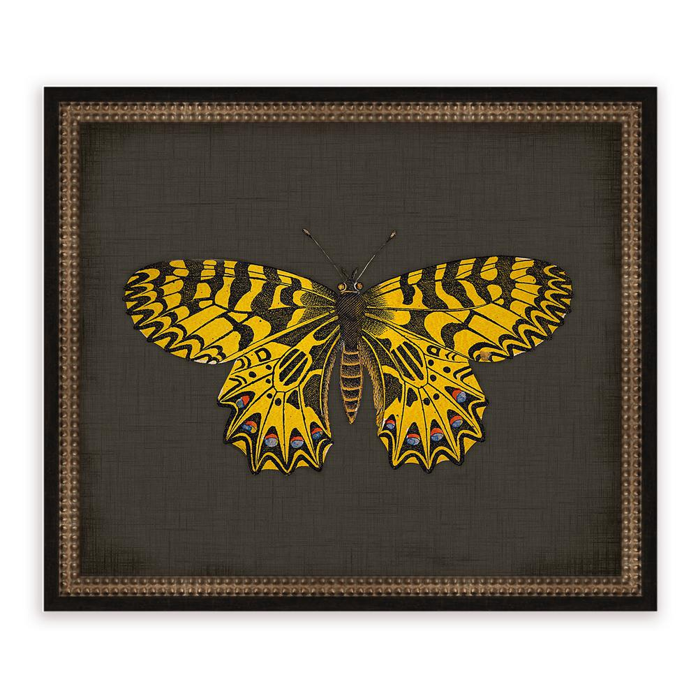 21 in. x 18 in. ''Butterflies on Black IX'' Framed Giclee