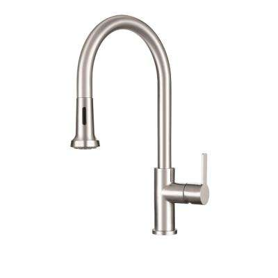 Bernadine Single-Handle Pull-Down Sprayer Kitchen Faucet with Fast-in Quick Install System in Stainless Steel