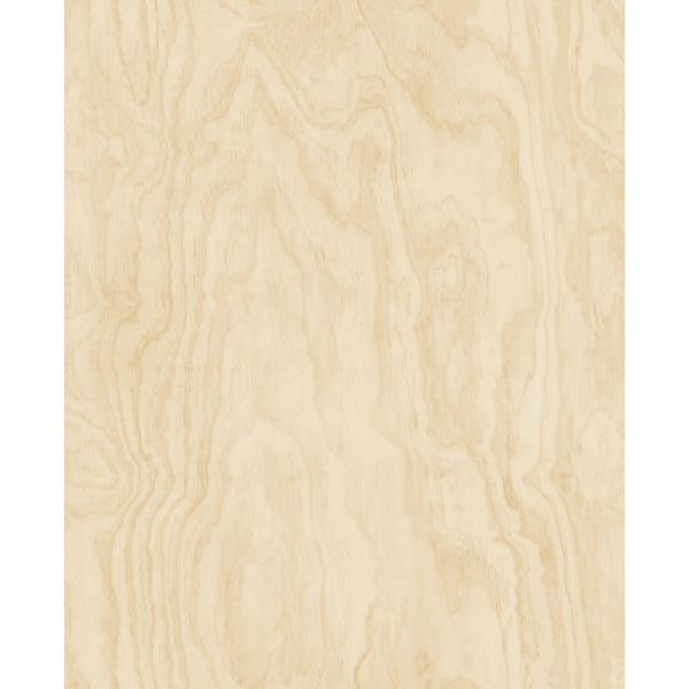 A-Street Bentham Neutral Plywood Wallpaper Sample 2540-24042SAM