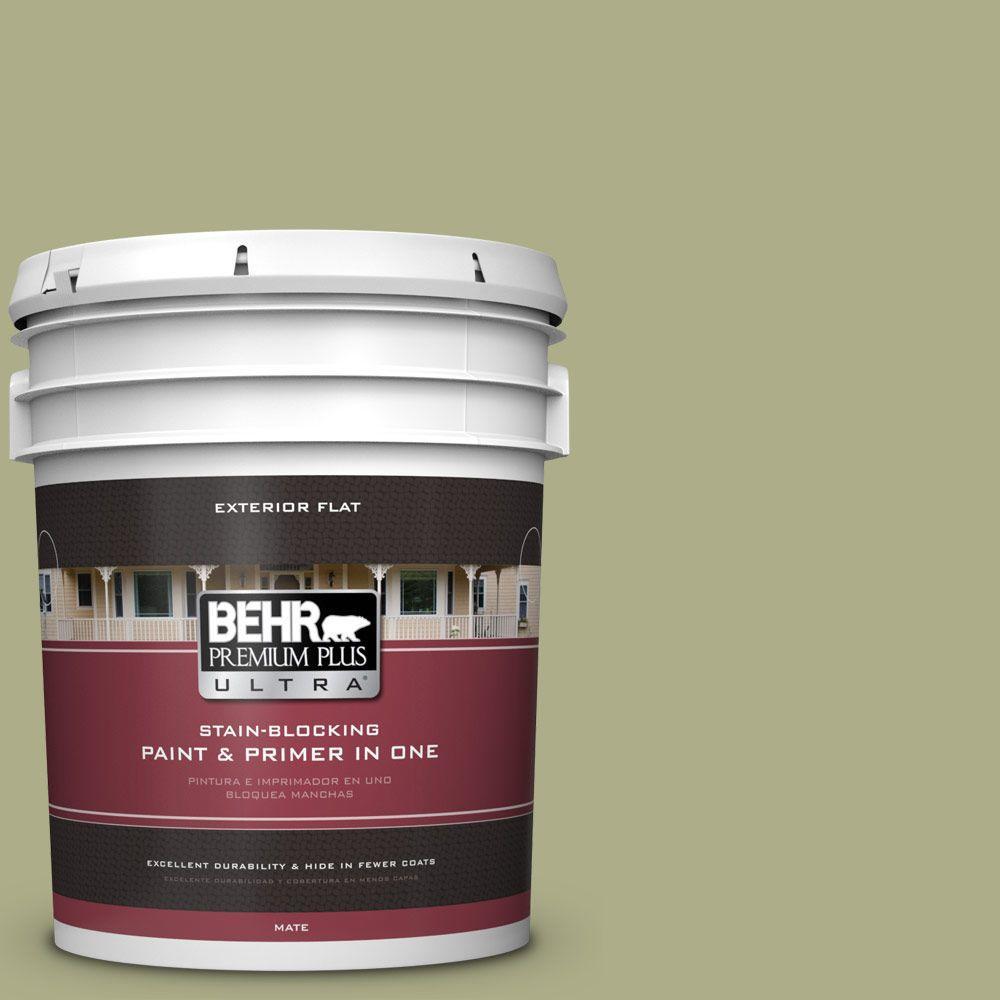 BEHR Premium Plus Ultra 5-gal. #PPU9-21 Sanctuary Flat Exterior Paint