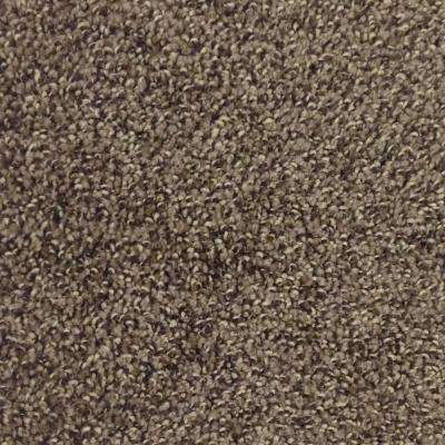 Mystic - Color Coffee Bean Twist 12 ft. Carpet