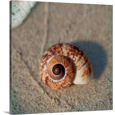 """""""Sand Surf Shell"""" by  Sue Schlabach Canvas Wall Art"""