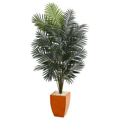 6.5 ft. High Indoor Paradise Artificial Palm Tree in Orange Planter